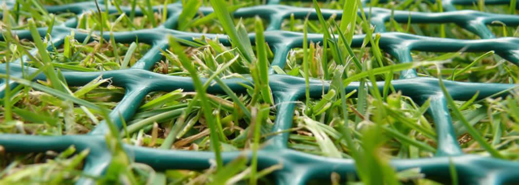 The green grass protection mesh is covering the grassland.