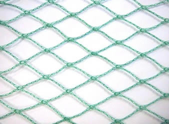 A piece of green diamond knitted bird netting on the white background.